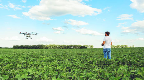Person flying a drone to collect data about crops